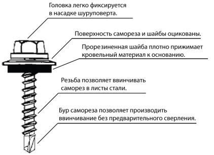 Схема кровельного самореза